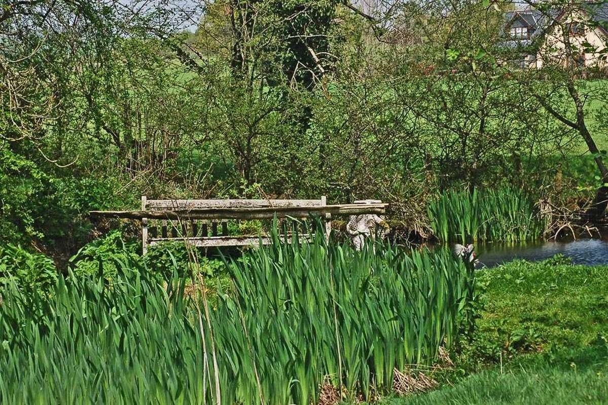 Bench by the pond