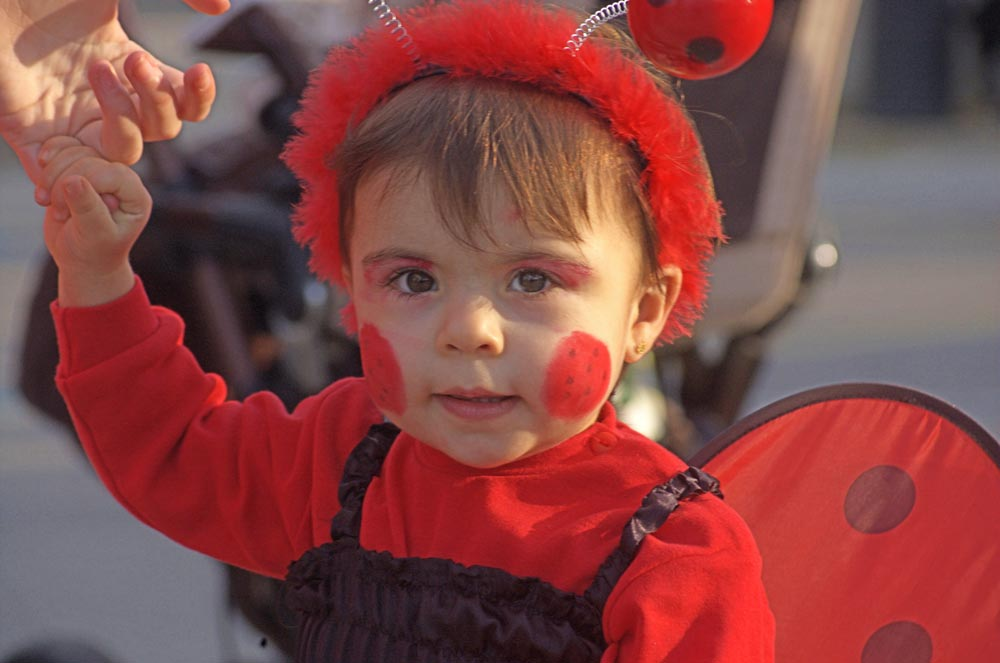 Maria ladybird baby